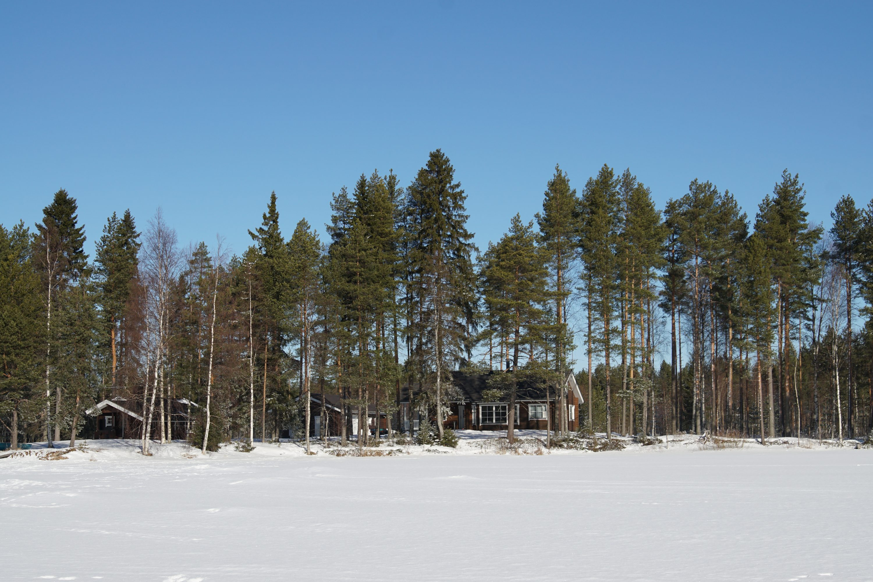 Property seen from the lake