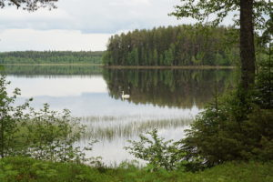 Lake seen from the sauna